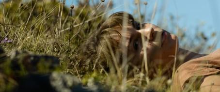 09-zvizdan-trava